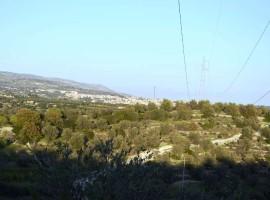 Rustico con Terreno panoramico