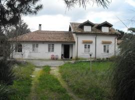 Noto, C.da Manghisi - VILLA SINGOLA con giardino